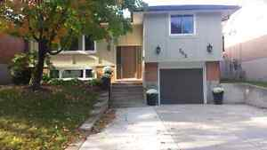 CONDITIONALLY SOLD Kitchener / Waterloo Kitchener Area image 1