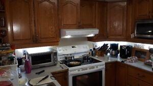 Kitchen Cabinets Honey Oak - Reno removal in progress