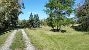 20 acres in Cook's Creek on Sapton Road