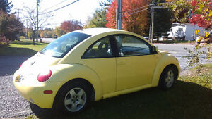 2000 Volkswagen New Beetle Bicorps