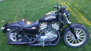 2004 harley sportster 883
