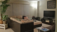 Professional Seeking Roomate in Large 1324SF Apartment Downtown!