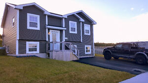New and beautiful home for rent - St. John's