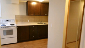Acadia bsmt bachelor suite near Heritage LRT station $745 for si