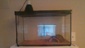 10 gallon reptile tank w/ under tank heater, lamp & more