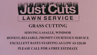 GRASS LAWN CUTTING SERVICE