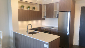 Brand NEW 1 bedroom Condo Downtown Toronto + Fully Furnished