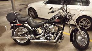 Harley-Davidson Softail noire montée Lowboy