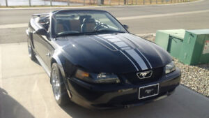 2004 Ford Mustang Convertible 4th anniversary edition