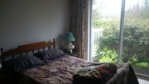 Furnished Room for rent/ Roommate wanted