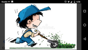 Lawn / Grass cutting North York and Downsview Area