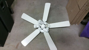Ceiling Fan with lights for Sale