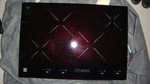 Kenmore Induction Cook Top