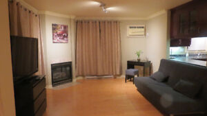 4 1/2 Condo (20 min express bus to downtown)