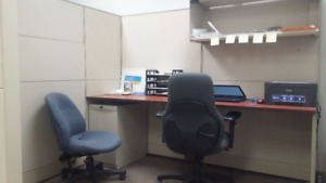 Cubicle in shared office space