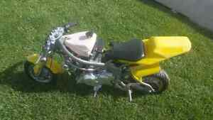 80 cc pocket rocket