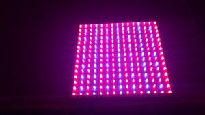LED GrowLamps