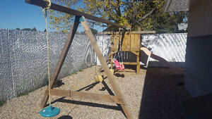 Large Swing Set