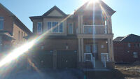 Beautiful Brand New Home For Rent In North Oshawa