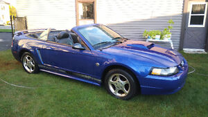 2004 Ford Mustang 40eme anniversaire Cabriolet