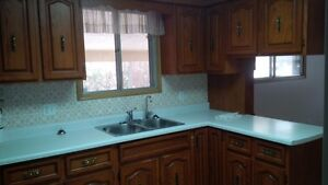 House for rent - 3 bedroom bungalow for rent available Kitchener / Waterloo Kitchener Area image 10
