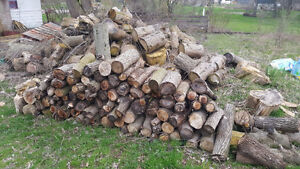 Wood for Sale  Camping  Fire Wood