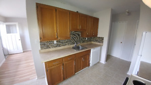 Lrg  3 bedroom 1 full bath Apartment near Queens and DT