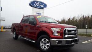 2015 Ford F-150 XLT-ACCIDENT FREE