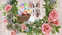 Looking For Vendors-Just In Time For Easter