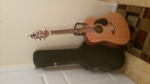 acoustic guitar takamine