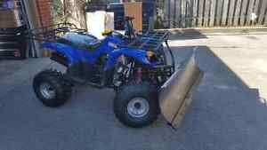 1 year old Cara ATV 250cc 4 speed with snow plow.