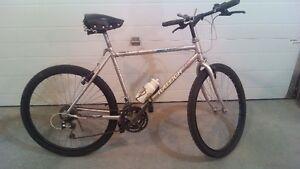 Mountain bike Raleigh.