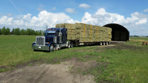 wheat and straw large round and square Bales for sale