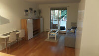 FURNISHED CONDO FOR RENT AT THE BEACHES !