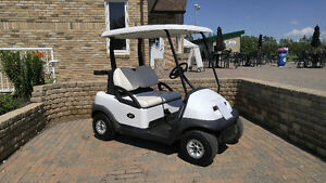 Electric Golf carts for sale