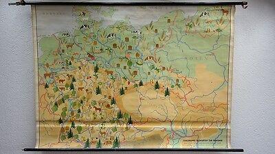arte Deutschland Bildkarte Grenzen 1945 Wandkarte Rollkarte (Tafel Grenzen)