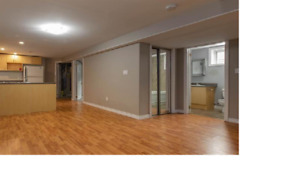 Centrally Located 2 Bedroom Basement Apartment