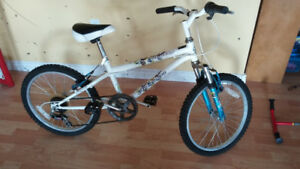 Girl's Nakamura 20 inch 6 speed bike