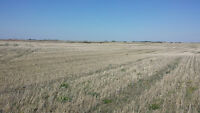 GREAT SASKATCHEWAN FARM AND LOCATION NEAR REGINA