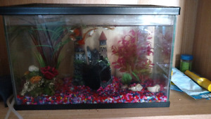 3 different fish tanks for sale