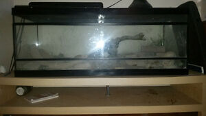 Reptile and/or Fish tank