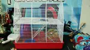 Hamster Cage with accessories (great start up)