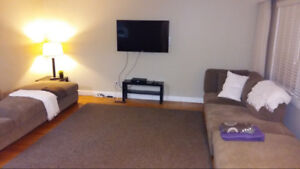 Room available to rent. 10 min walk to the U of M grounds