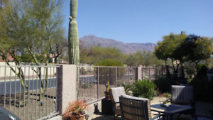Arizona winter rental with golf course access!