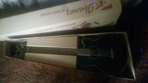 Ibanez Acoustic/Electric Bass