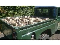 Christmas Deal! 10% off £100 Truck Load Of Logs! APPROX 2 CUBIC METRES