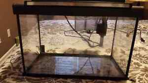 5 gallon fish tank with filter