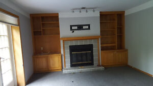 fireplace wall  includes shelves, tv bracket, wood burning firep