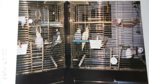2 Large Bird Cages & Large box of accessories (many never used)