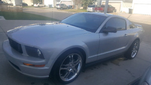Ford Mustang 4.0L 2005 Manual
